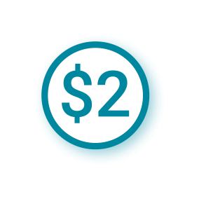 $2-icon